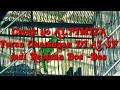 Aksi Cucal Ijo Alfimiz Roll Hyper Materi Super Aj Sf Ngoro  Mp3 - Mp4 Download