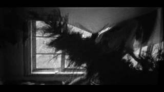 This Will Destroy You - Black Dunes (Official Video)