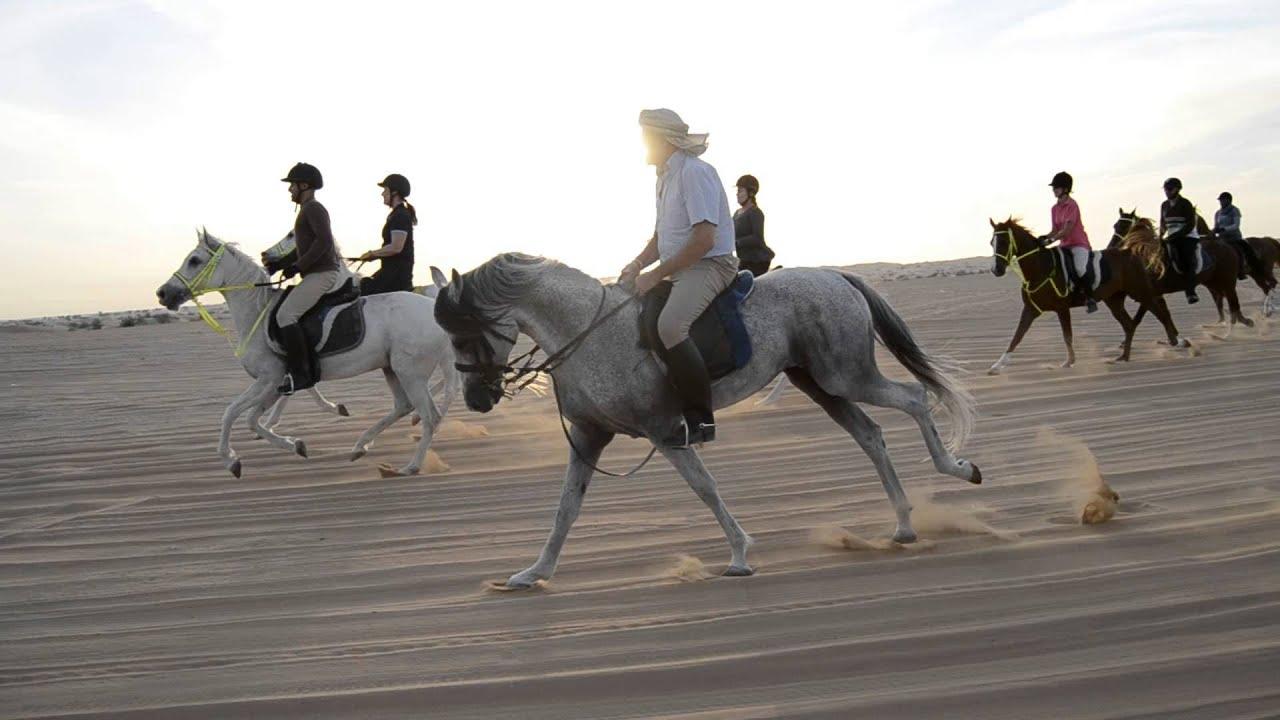 Horse riding coupon dubai