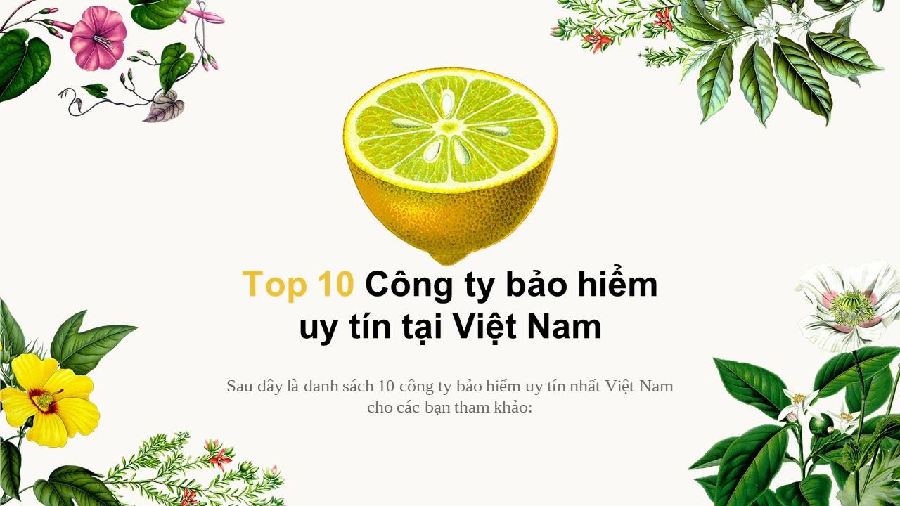 Top 10 công ty bảo hiểm uy tín tại Việt Nam