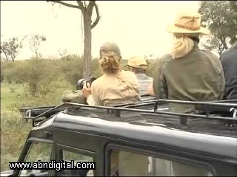 The Recovery of Kenya's Tourism Industry