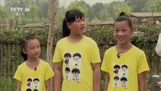 《芝麻开门》 20190824 挑战大现场 南阳农耕文化(下)|CCTV少儿