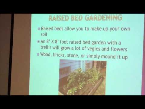 Gardening 101 with Neil Moran