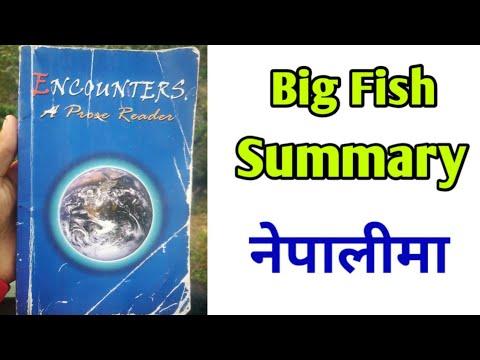 The Big Fish Summary (नेपालीमा)