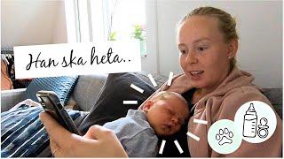 Vlogg - Vår BEBIS är HÄR! -