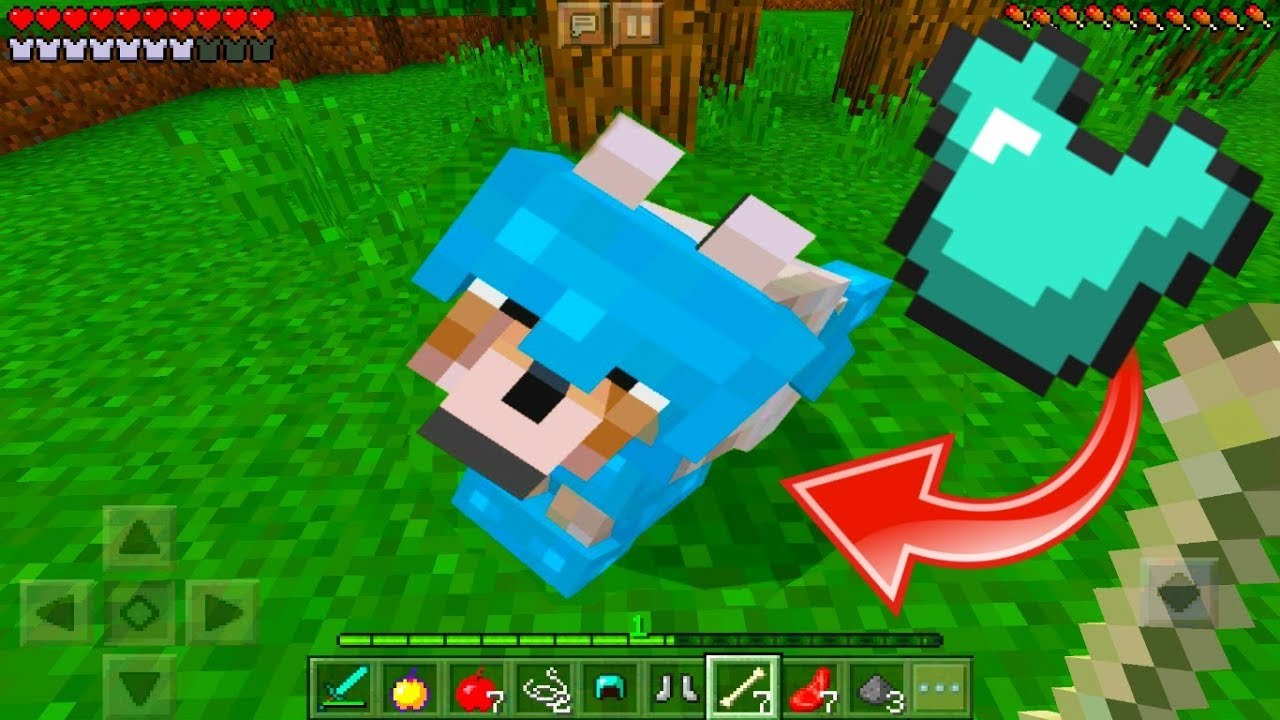 How To Get WOLF ARMOR In Minecraft Pocket Edition Xbox Ps3 Ps4 Switch YouTube