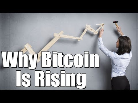 Why Is Bitcoins Price Rising? | Bitcoin Futures Trading + More