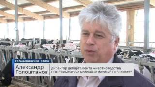 До конца года будет достроен крупнейший молокозавод в Тюменской области
