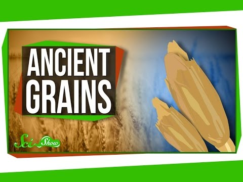 Are Ancient Grains Really Better For You?