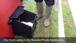 Recycled Plastic Chicken House Nesting Box Demonstration