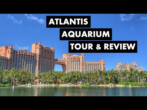 Visiting Atlantis Resort In Nassau Bahamas Paradise Island Tour & Review With Hyde