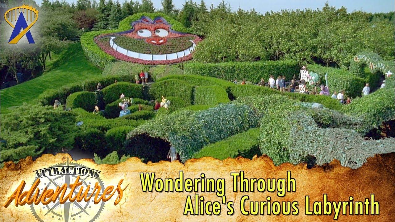 Wondering Through Alice S Curious Labyrinth At Disneyland Paris Attractions Adventures
