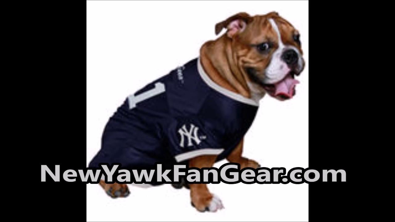 best website 8ab26 8bc34 Yankees Dog Jersey