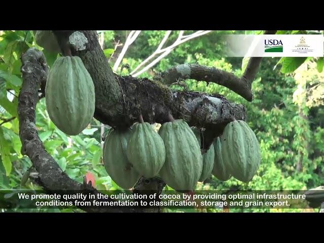 Historias de Éxito Proyectos USDA 2017