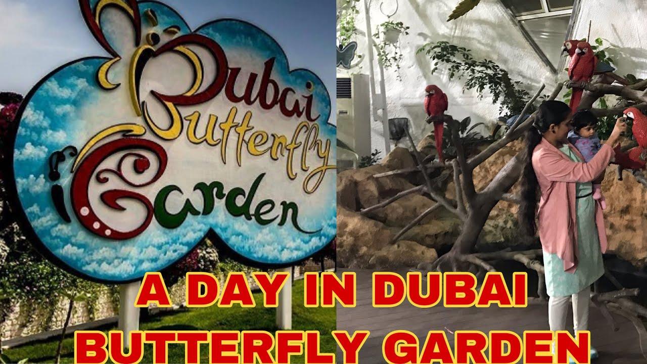 DUBAI BUTTERFLY GARDEN   Vlog Before CORONA & LOCKDOWN  A Weekend Day In Dubai Anjana Karun Malyalam