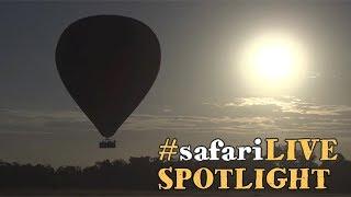 safariLIVE takes to the skies to explore the Maasai Mara! thumbnail