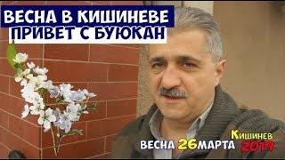 Весна в Кишиневе 2019 и немного о патриотизме и любви к Родине