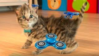 Маленький КОТЁНОК играет в СПИНЕР рисуем в мультик игра про котика для детей #Малышерин