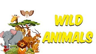 8 dk'da English Wild Animals (İngilizce Vahşi Hayvanlar)