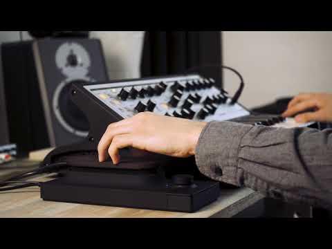 Touché & Moog Sub Phatty : Funkstep