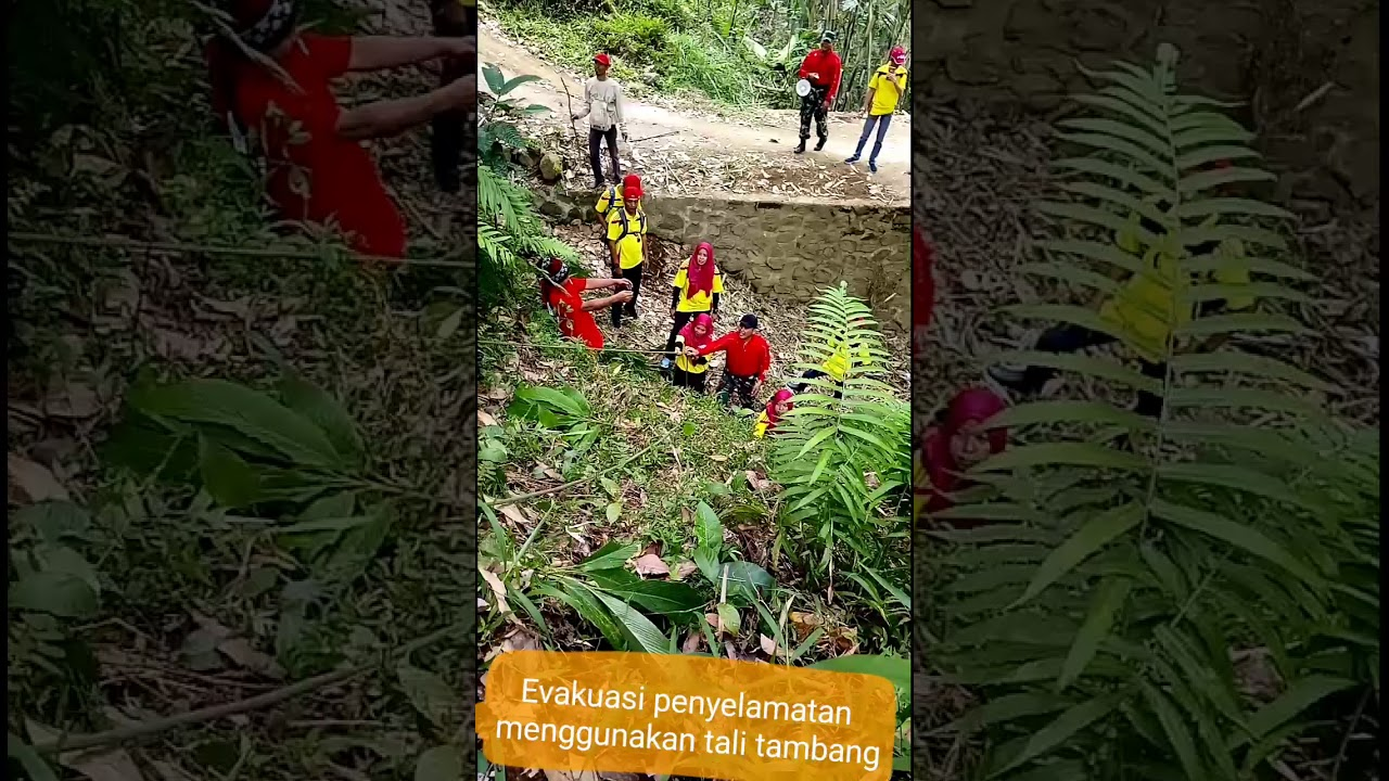 Image Result For Korban Tambang