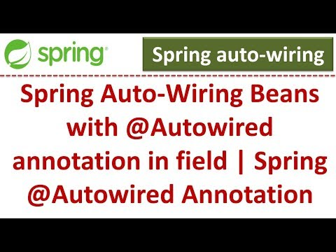 spring-auto-wiring-beans-with-@autowired-annotation-in-field-|-spring-@autowired-annotation