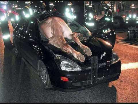 weird car crashes