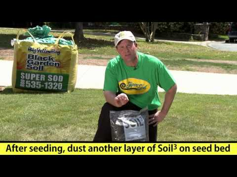 How-to Fix Bare Patches in a Lawn with Grass Seed