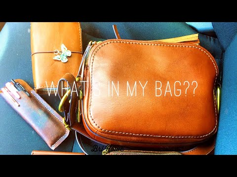 What's in my Bag?? | Fossil Elle Crossbody Bag thumbnail