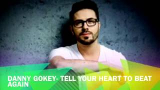Tell Your Heart To Beat Again- Danny Gokey