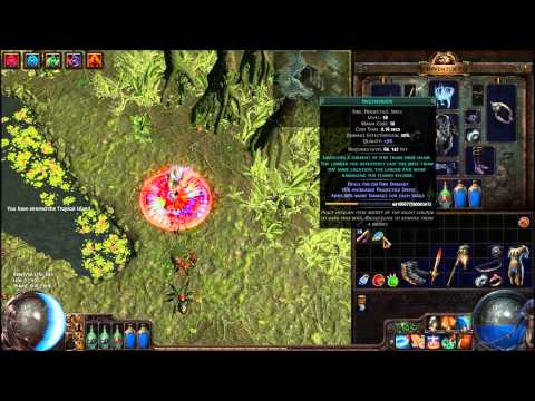 Poe Build Cold Snap