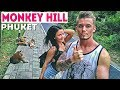 Гора обезьян. Таиланд, Пхукет Thailand, Phuket. Манки Хилл пхукет Monkey Hill Phuket