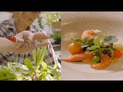 California Dreamer: Chef John Cox is rethinking the future of food.