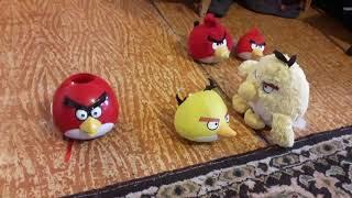 Angry Birds Plush Shorts The Cloning Machine