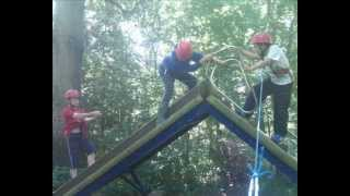 Wiltshire Outdoor Learning Team - Woodland Learning Term 6 2013