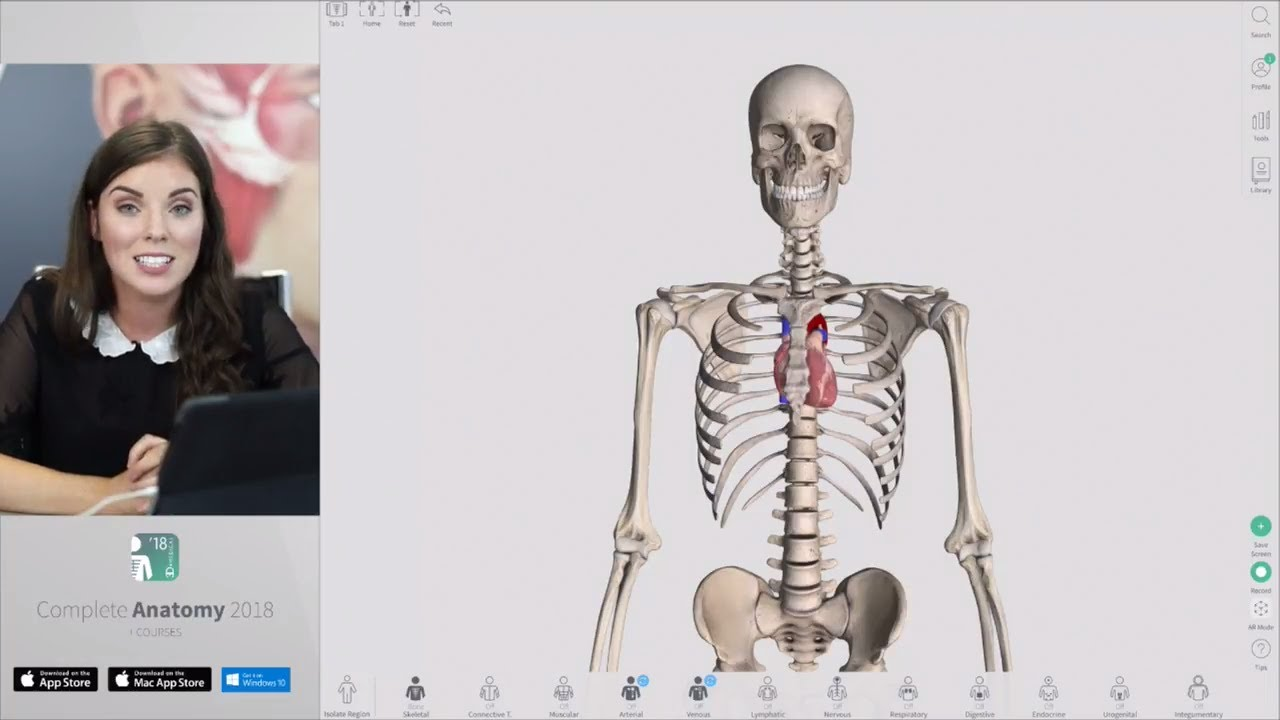 Tips & Tricks in Complete Anatomy | Live - YouTube