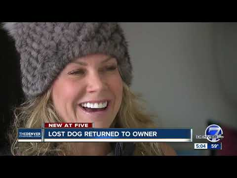 JJ & Nina - Stolen dog returned to owner:)