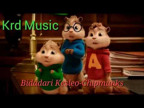 Bidadari Kesleo-Chipmunks