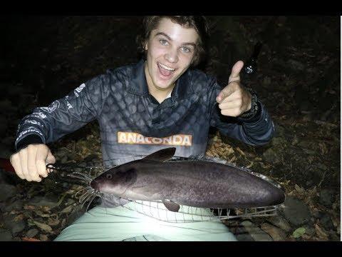 Catch n Cook Anaconda OVERNIGHT Adventure! Pt.2