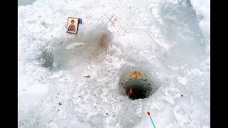монстр утащил удочку под лед