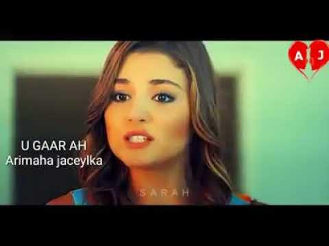 Arimaha Jaceylka