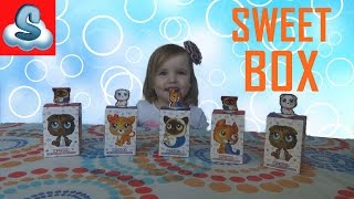 Распаковка Свит Бокс Пушистики Котята Коробочки Сюрпризы Unpacking Sweet Box Toys Kitty surprises