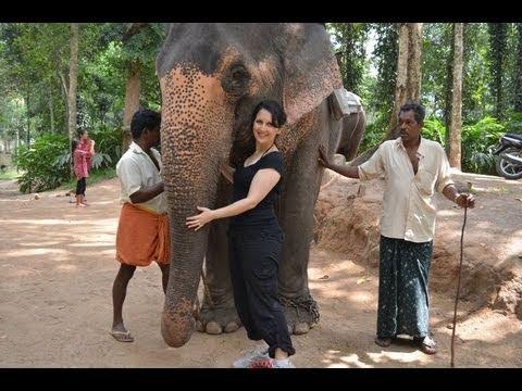 My Trip to India - Part III: Kerala - The Elephants of Thekkady