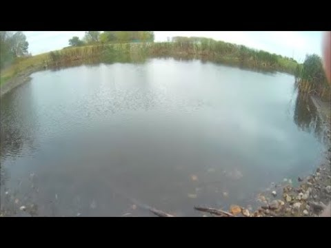 Underwater episode 14: Rotary Park, LaSalle IL (site #13/location 1)