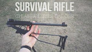Chiappa Little Badger - Survival Gun Review - Day 16