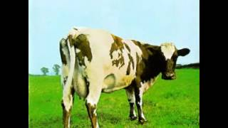 Pink Floyd- Funky Dung