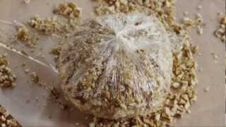 How to Make an Easy Cheese Ball