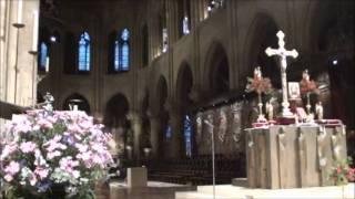 Нотр-Дам-де-Пари -- Собор Парижской Богоматери(Небольшая прогулка вокруг знаменитого собора, воспетого Виктором Гюго. Простите за дрожание рук! Снимала..., 2011-12-04T13:10:14.000Z)