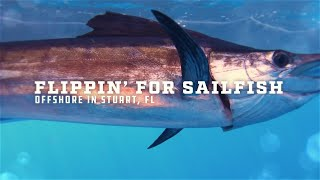 Mud Hole TV: Flippin' for Sailfish   Custom MHX Rods Take on the Ocean's Fastest Fish   Stuart, FL