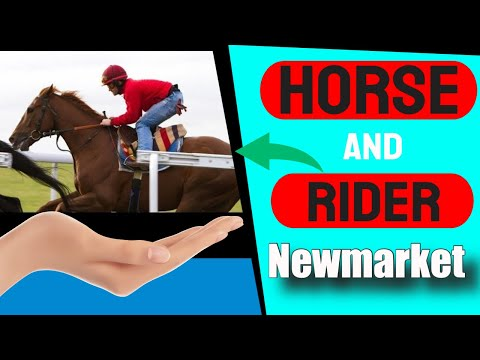 Horse and Rider Newmarket